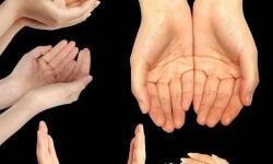 Руки человека – книга о нем