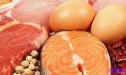 Белковая диета – быстро и вкусно